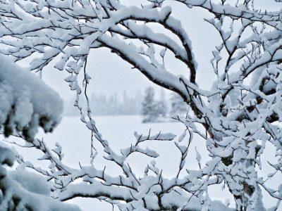 Atelier de do-in pour la saison de l'hiver et l'élément eau à la Colle sur loup, Alpes Maritimes